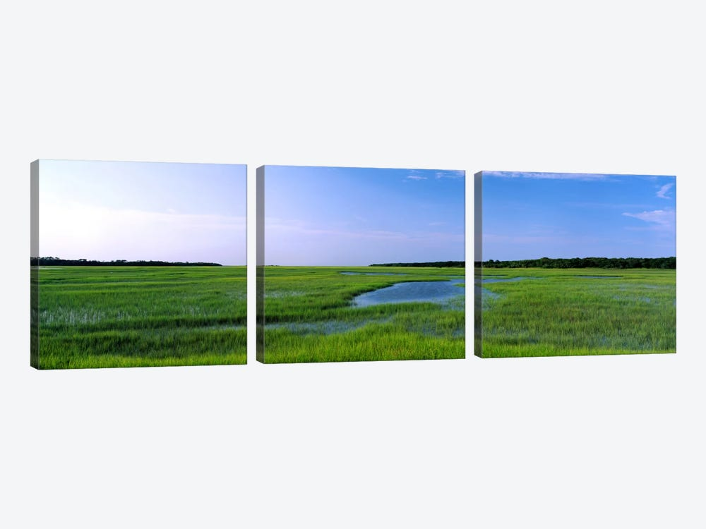 USA, Florida, Jacksonville, Atlantic Coast, Salt Marshes by Panoramic Images 3-piece Canvas Art Print