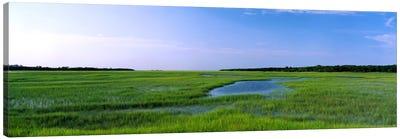 USA, Florida, Jacksonville, Atlantic Coast, Salt Marshes Canvas Art Print