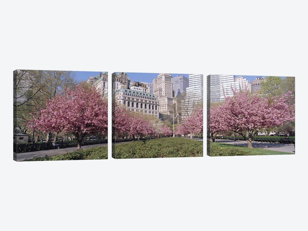 Cherry Trees, Battery Park, New York City, New York, USA by Panoramic Images 3-piece Canvas Art