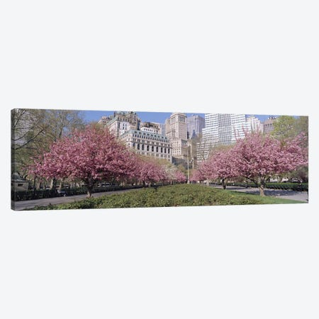 Cherry Trees, Battery Park, New York City, New York, USA 3-Piece Canvas #PIM2940} by Panoramic Images Canvas Artwork