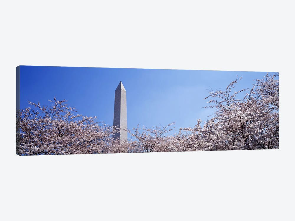 Washington Monument behind cherry blossom trees, Washington DC, USA by Panoramic Images 1-piece Canvas Wall Art
