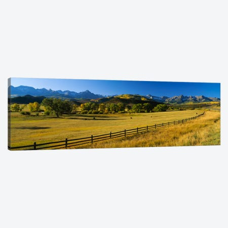Trees in a field, Colorado, USA Canvas Print #PIM295} by Panoramic Images Canvas Art