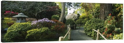 Japanese Tea Garden, San Francisco, California, USA Canvas Print #PIM2978