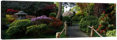 Japanese Tea Garden, San Francisco, California, USA Canvas Art Print