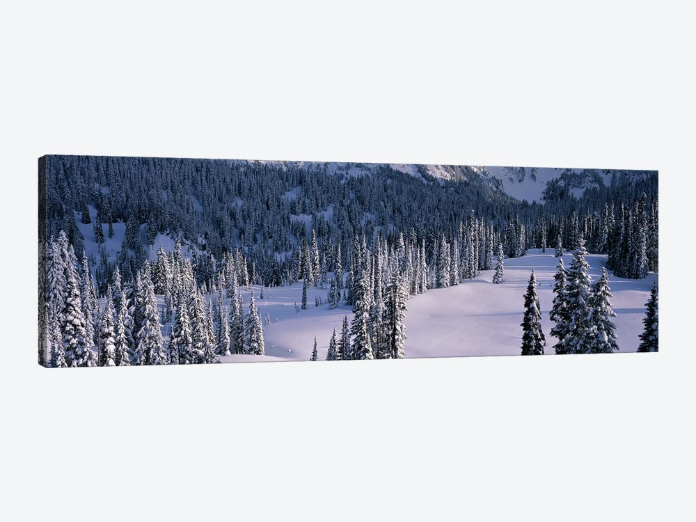 Fir Trees, Mount Rainier National Park, Washington State, USA by Panoramic Images 1-piece Canvas Artwork