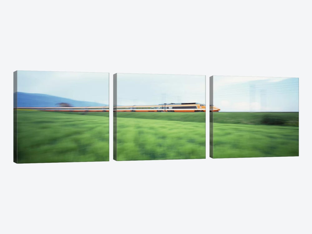 TGV High-speed Train passing through a grassland by Panoramic Images 3-piece Canvas Wall Art