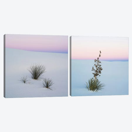 Sopatree Yucca Diptych Canvas Print Set #PIM2HSET001} by Panoramic Images Art Print