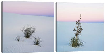 Sopatree Yucca Diptych Canvas Art Print