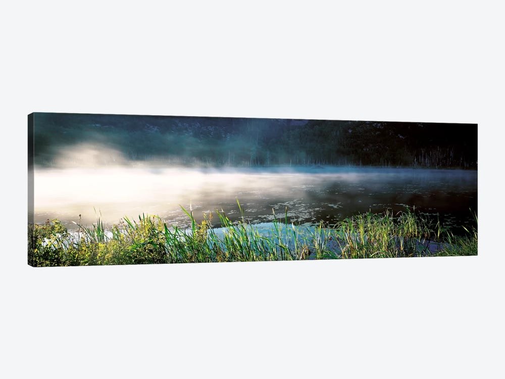 Morning fog Acadia National Park ME USA by Panoramic Images 1-piece Art Print