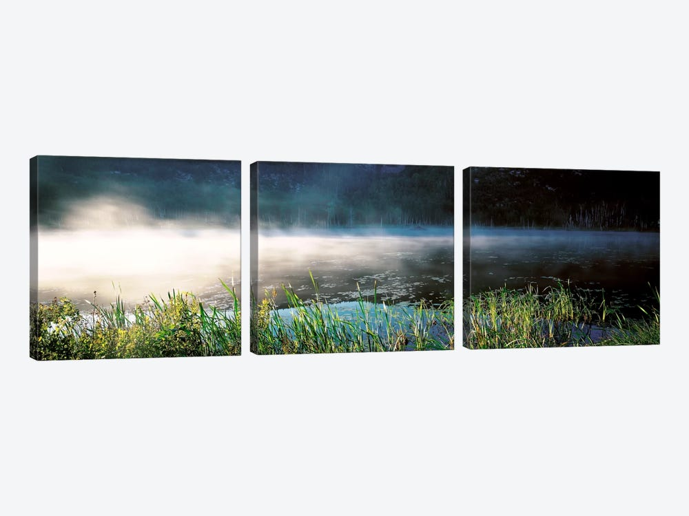 Morning fog Acadia National Park ME USA by Panoramic Images 3-piece Canvas Print