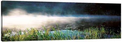 Morning fog Acadia National Park ME USA Canvas Art Print