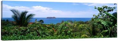 Manuel Antonia National Park nr Quepos Costa Rica Canvas Print #PIM307