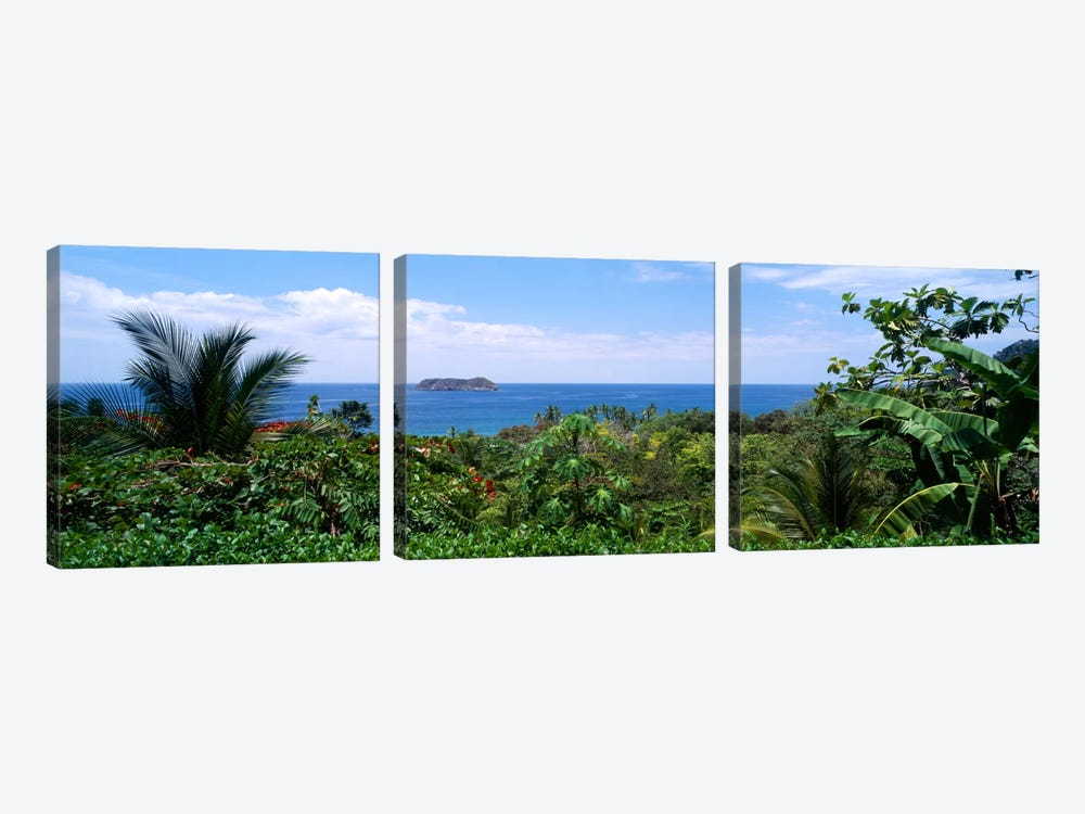 Manuel Antonia National Park nr Quepos Costa Rica by Panoramic Images 3-piece Canvas Art Print