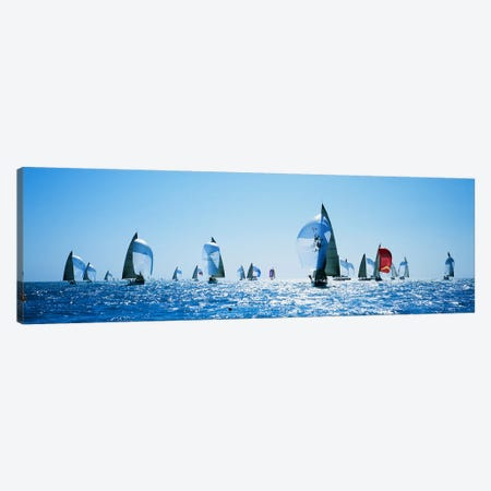 Sailboat Race, Key West, Florida, USA Canvas Print #PIM3086} by Panoramic Images Canvas Print