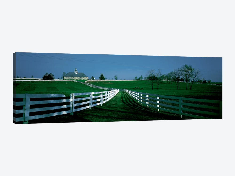 Outdoor Fields Of A Horse Farm, Lexington, Kentucky, USA by Panoramic Images 1-piece Canvas Wall Art
