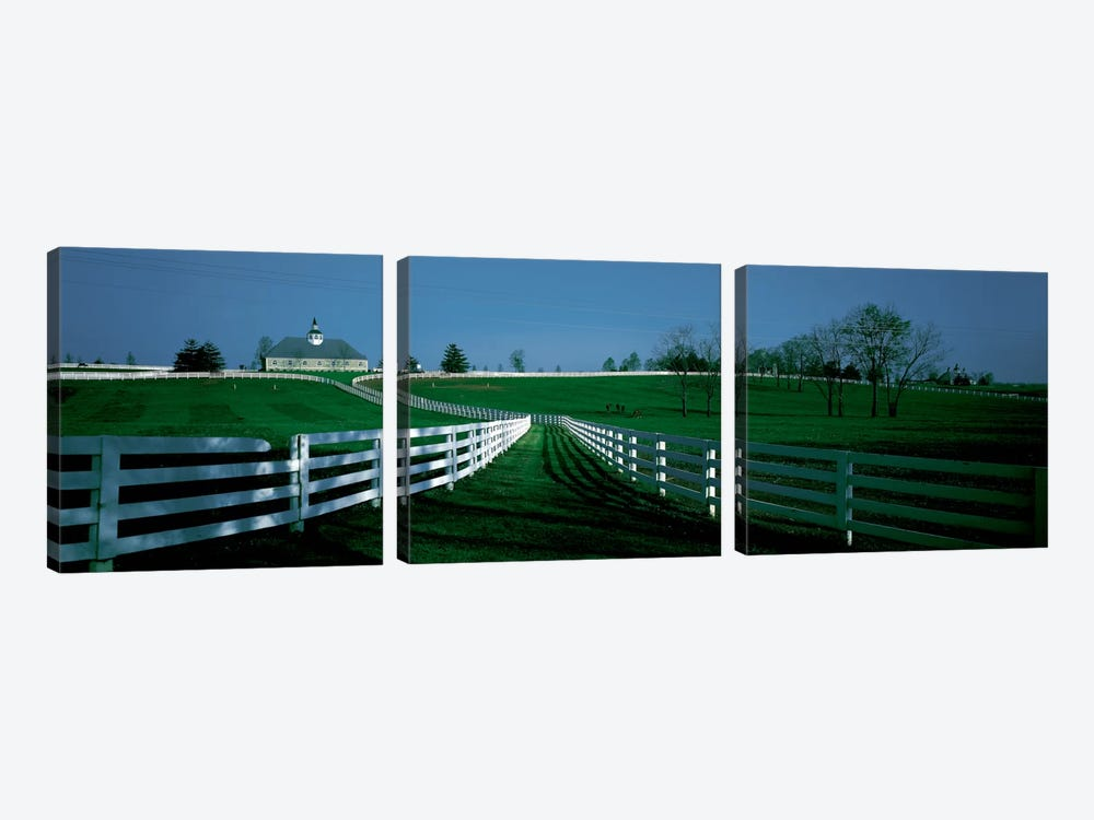 Outdoor Fields Of A Horse Farm, Lexington, Kentucky, USA 3-piece Canvas Artwork