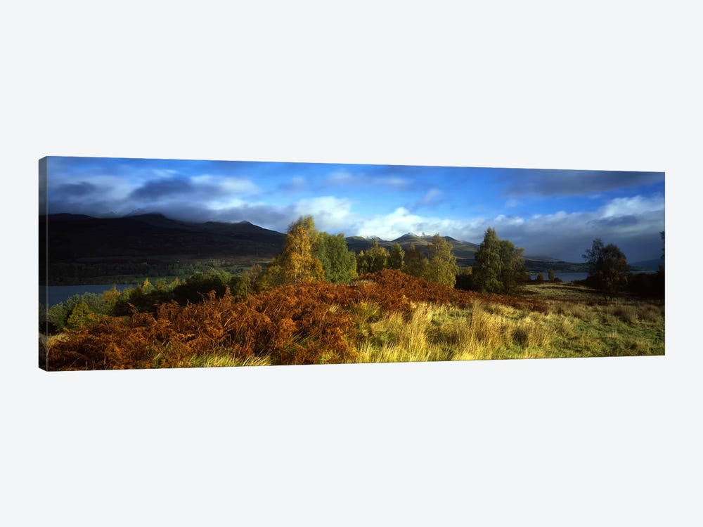 Peaceful Autumn Landscape, Near Loch Tay, Highlands, Scotland, United Kingdom by Panoramic Images 1-piece Canvas Artwork