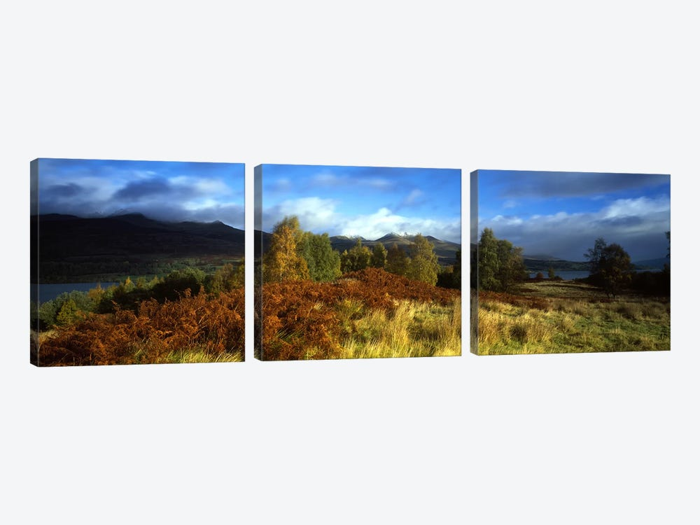 Peaceful Autumn Landscape, Near Loch Tay, Highlands, Scotland, United Kingdom by Panoramic Images 3-piece Canvas Art