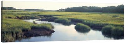 Salt Marsh Cape Cod MA USA Canvas Art Print