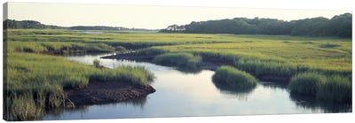 Salt Marsh Cape Cod MA USA Canvas Art Print