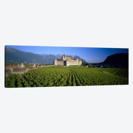 Vineyard in front of a castle, Aigle Castle, Musee de la Vigne et du Vin, Aigle, Vaud, Switzerland Canvas Print #PIM3195} by Panoramic Images Art Print