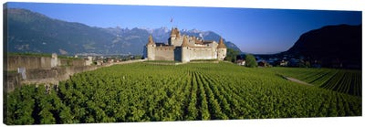 Vineyard in front of a castle, Aigle Castle, Musee de la Vigne et du Vin, Aigle, Vaud, Switzerland Canvas Art Print