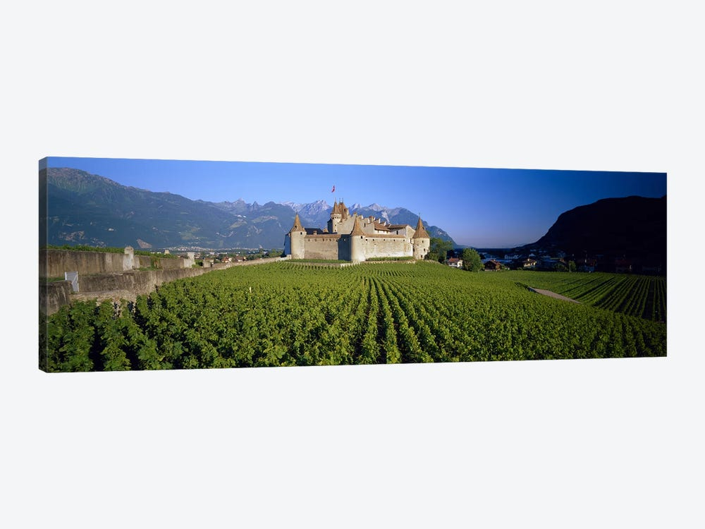 Vineyard in front of a castle, Aigle Castle, Musee de la Vigne et du Vin, Aigle, Vaud, Switzerland by Panoramic Images 1-piece Art Print