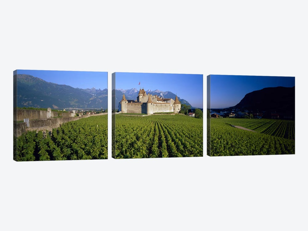 Vineyard in front of a castle, Aigle Castle, Musee de la Vigne et du Vin, Aigle, Vaud, Switzerland by Panoramic Images 3-piece Art Print