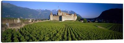 Vineyard in front of a castle, Aigle Castle, Musee de la Vigne et du Vin, Aigle, Vaud, Switzerland Canvas Art Print