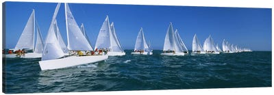 Sailboat racing in the ocean, Key West, Florida, USA Canvas Art Print