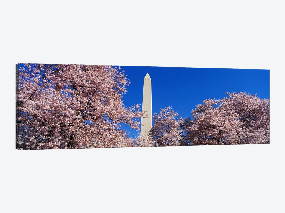 Cherry Blossoms Washington Monument by Panoramic Images 1-piece Canvas Art Print