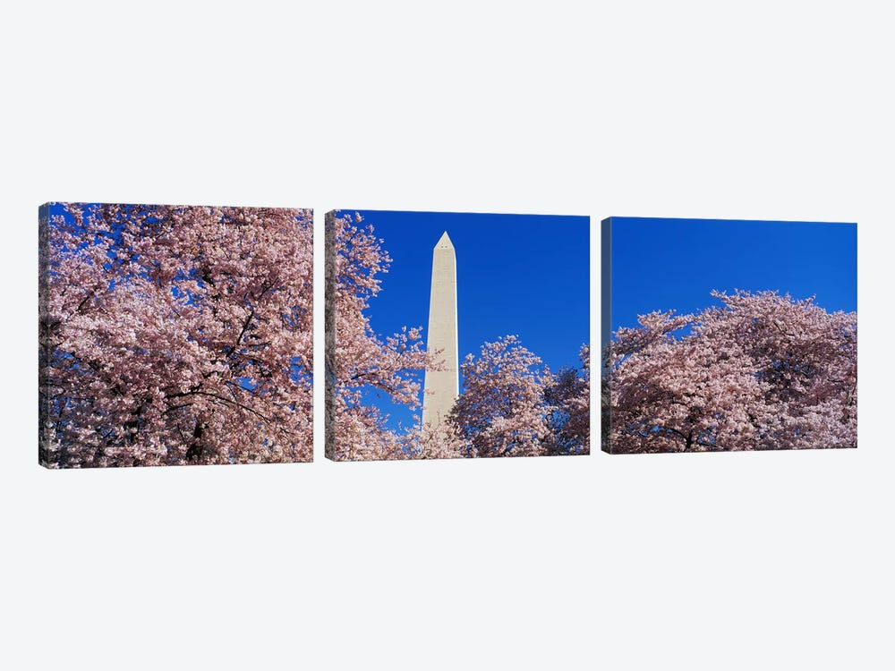 Cherry Blossoms Washington Monument by Panoramic Images 3-piece Canvas Art Print