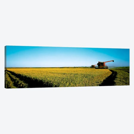 Harvested rice field Glenn Co CA USA Canvas Print #PIM327} by Panoramic Images Canvas Artwork