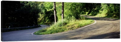 Country Road Southern Germany Canvas Print #PIM3413