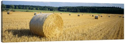 Bales of Hay Southern Germany Canvas Print #PIM3414