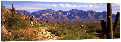 Golf Course Tucson AZ Canvas Art Print