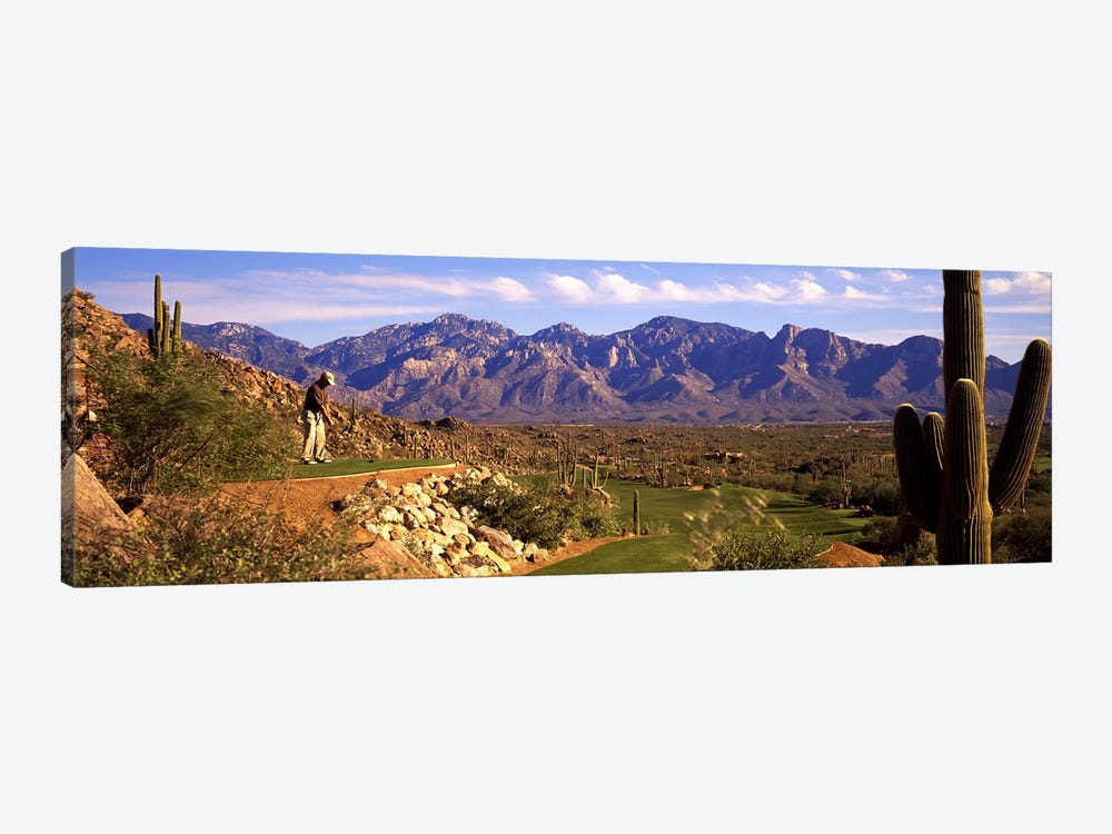 Golf Course Tucson AZ by Panoramic Images 1-piece Canvas Print