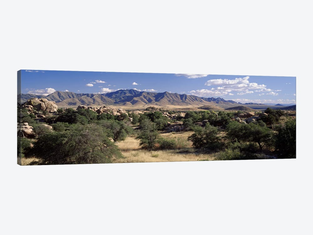 Dragoon Mountains, Texas Canyon, Coronado National Forest, Arizona, USA by Panoramic Images 1-piece Canvas Artwork