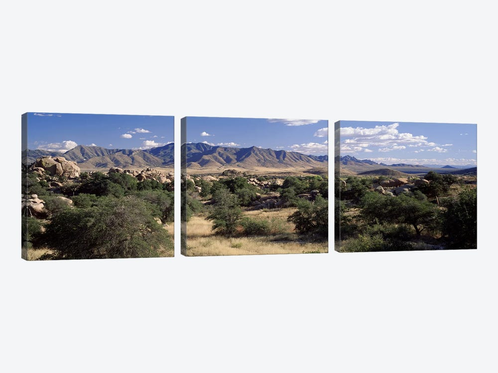 Dragoon Mountains, Texas Canyon, Coronado National Forest, Arizona, USA by Panoramic Images 3-piece Canvas Wall Art