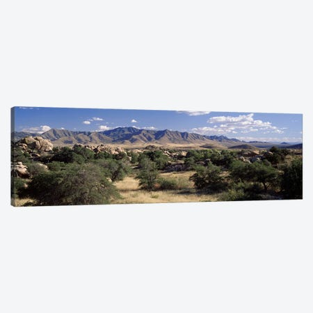 Dragoon Mountains, Texas Canyon, Coronado National Forest, Arizona, USA Canvas Print #PIM3478} by Panoramic Images Canvas Print
