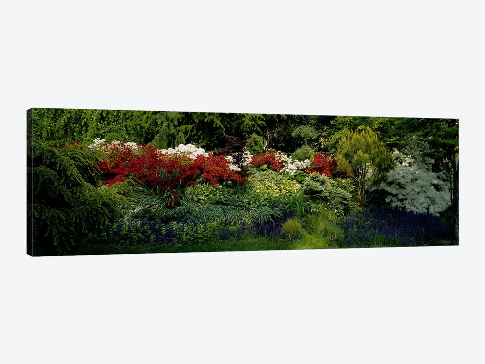 High Angle View Of Flowers In A Garden, Baltimore, Maryland, USA 1-piece Canvas Print
