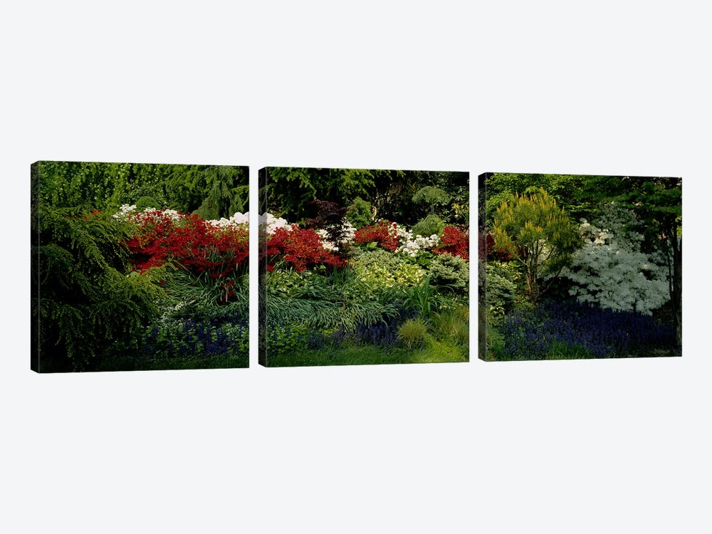 High Angle View Of Flowers In A Garden, Baltimore, Maryland, USA by Panoramic Images 3-piece Canvas Print