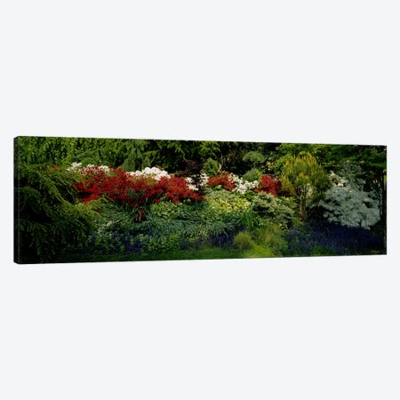 High Angle View Of Flowers In A Garden, Baltimore, Maryland, USA Canvas Print #PIM3479} by Panoramic Images Canvas Art Print