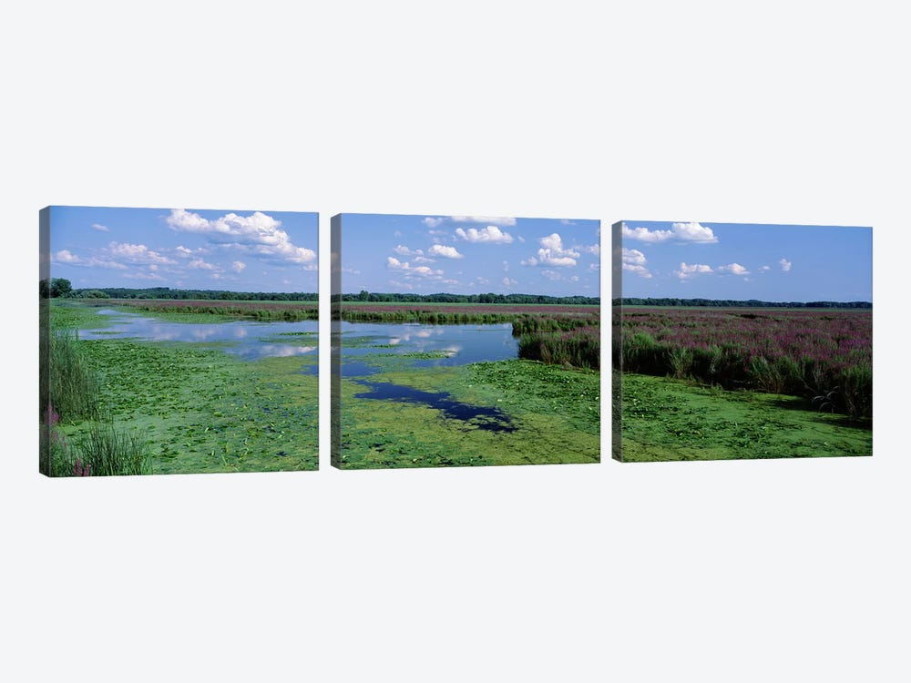 Marsh Landscape, Montezuma National Wildlife Refuge, Seneca County, New York, USA by Panoramic Images 3-piece Canvas Art Print