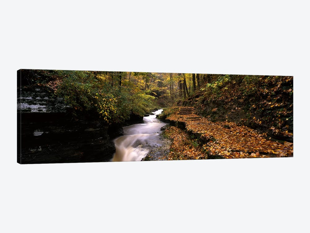 Gorge Trail, Buttermilk Falls State Park, Ithaca, New York, USA by Panoramic Images 1-piece Canvas Art