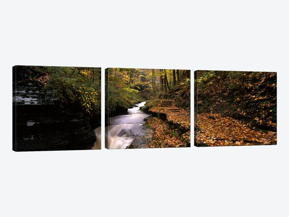 Gorge Trail, Buttermilk Falls State Park, Ithaca, New York, USA by Panoramic Images 3-piece Canvas Art