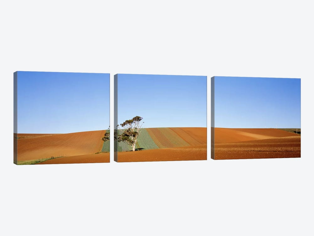 Australia by Panoramic Images 3-piece Canvas Artwork