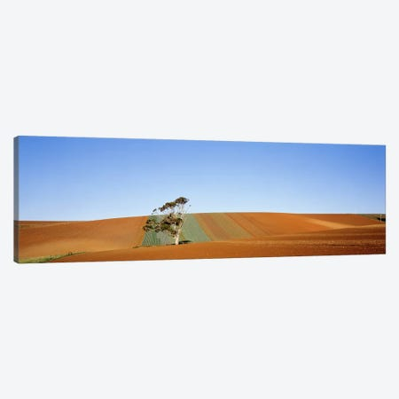 Australia Canvas Print #PIM3546} by Panoramic Images Canvas Wall Art