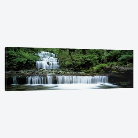 Liffey Falls, Tasmania, Australia Canvas Print #PIM3547} by Panoramic Images Canvas Wall Art