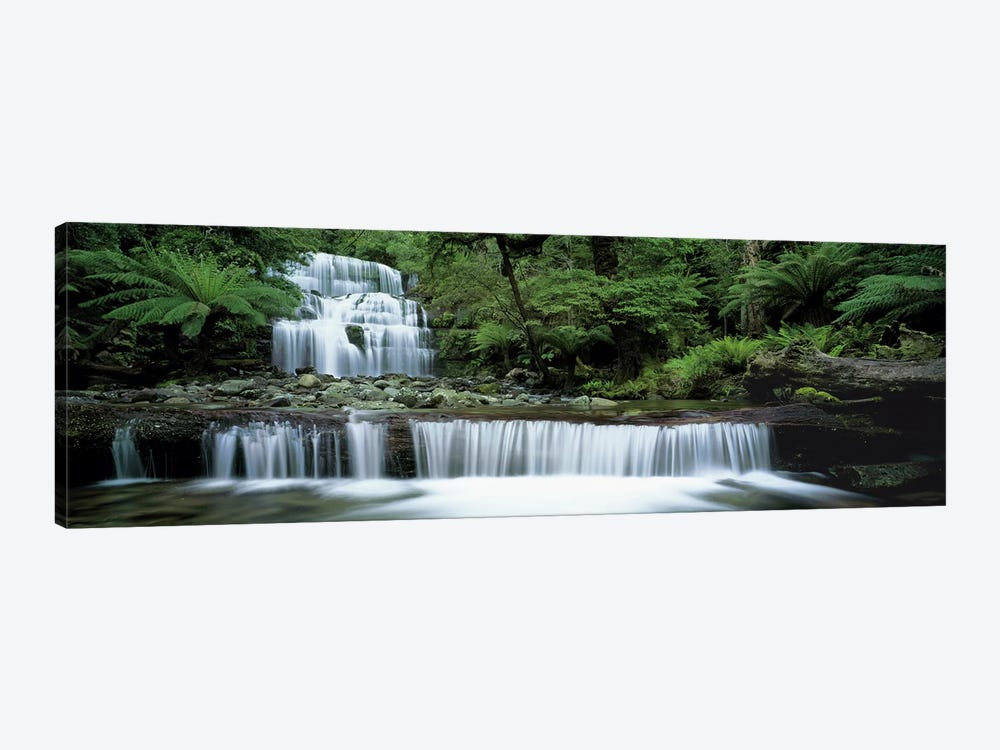 Liffey Falls, Tasmania, Australia by Panoramic Images 1-piece Art Print